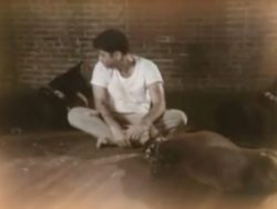 cristao-na-cela-com-animais